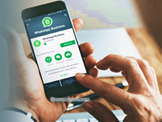 Download Latest Whatsapp Business App image